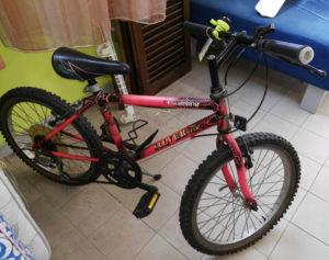 Biciclettina cm.20 - € 29.90